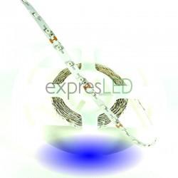 Interiérový  LED pás modrý, 3528, 60 LED/m