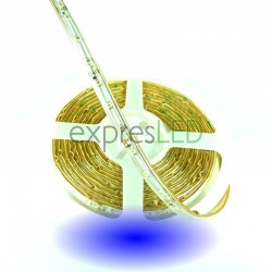 Vodeodolný LED pás modrý, 3528, 60 LED/m