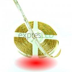 Vodeodolný LED pás červený, 3528, 60 LED/m